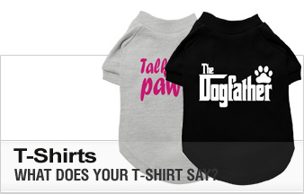 What does your dog t shirt say yorkie clothes from Dog clothes design your own