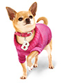 Bruiser's Outfit - Pink Sweater / Diamante Collar & Lead Set